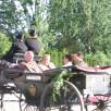 Int.Dressurturnier Kaiserhof 009